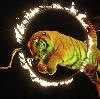 Цирки в Алексеевске